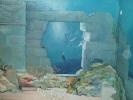 facade-trompe-l-oeil36