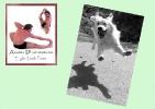 yoga-animaux05