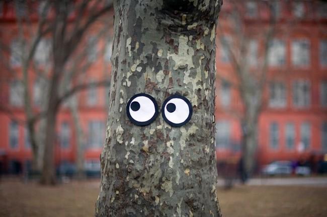 eyes-street-art-3