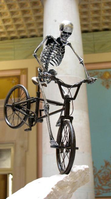 squelette-10