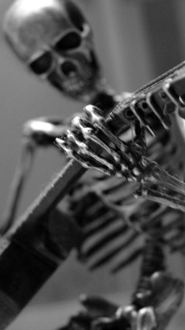 squelette-9