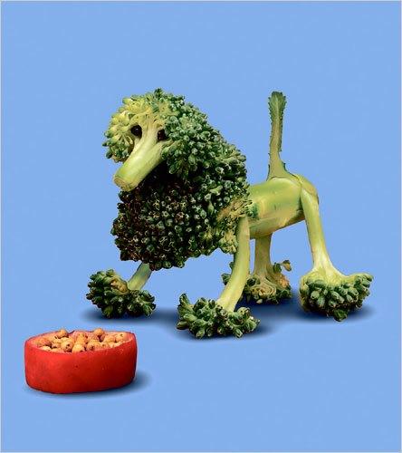 nourriture-creative-10