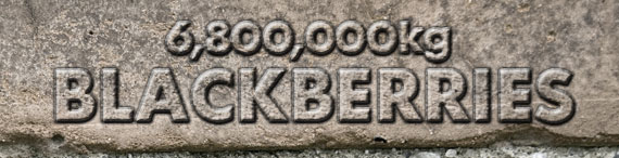 poids d'internet blackberry