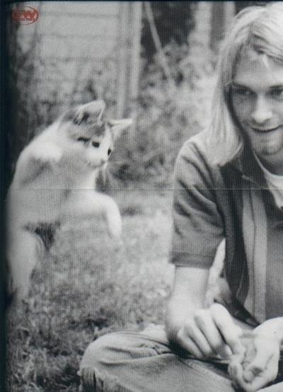rock stars et leur chat