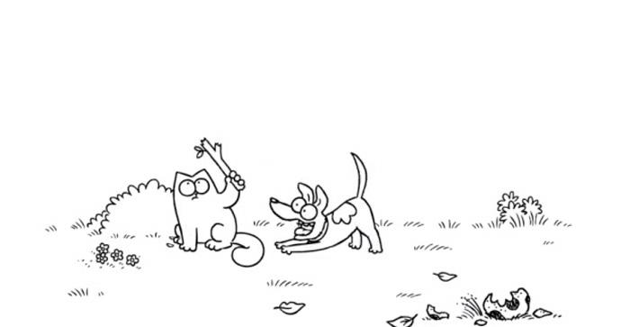 Simon' Cat Joue à la Baballe