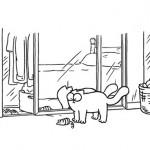 Simon's Cat devant le miroir