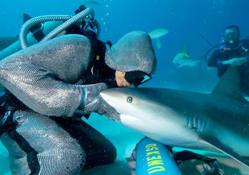 la femme qui danse avec les requins kiss
