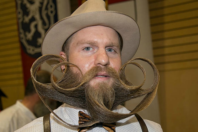Les championnats du monde de barbes et moustaches 2015 for Championnat du monde de boules carrees