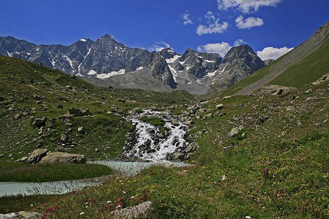 Réou d'Arsine dans le Parc National des Ecrins